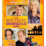 """9 Wise Quotes from """"The Best Exotic Marigold Hotel"""""""
