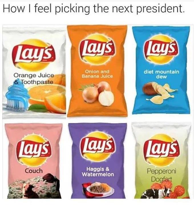 How I feel picking the next president